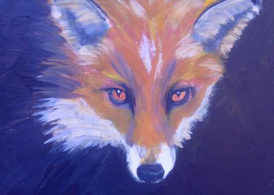 Head Study of a Fox