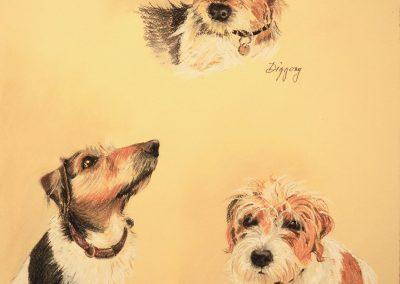 Pigling, Diggory & Clementina, pastel