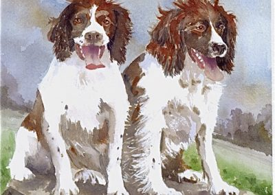 Spaniels SOLD